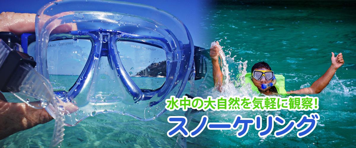 伊豆の ビーチ シュノーケリング